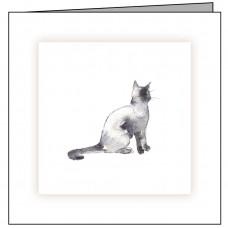 C01 Sitting Cat