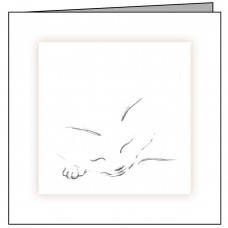 C08 Sleeping Cat Sketch