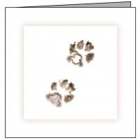 CD03 Cat Paws