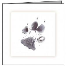 D02 Dog Paw