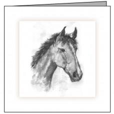 EQ04 Horses Head
