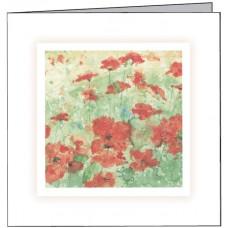 GEN06 Poppies